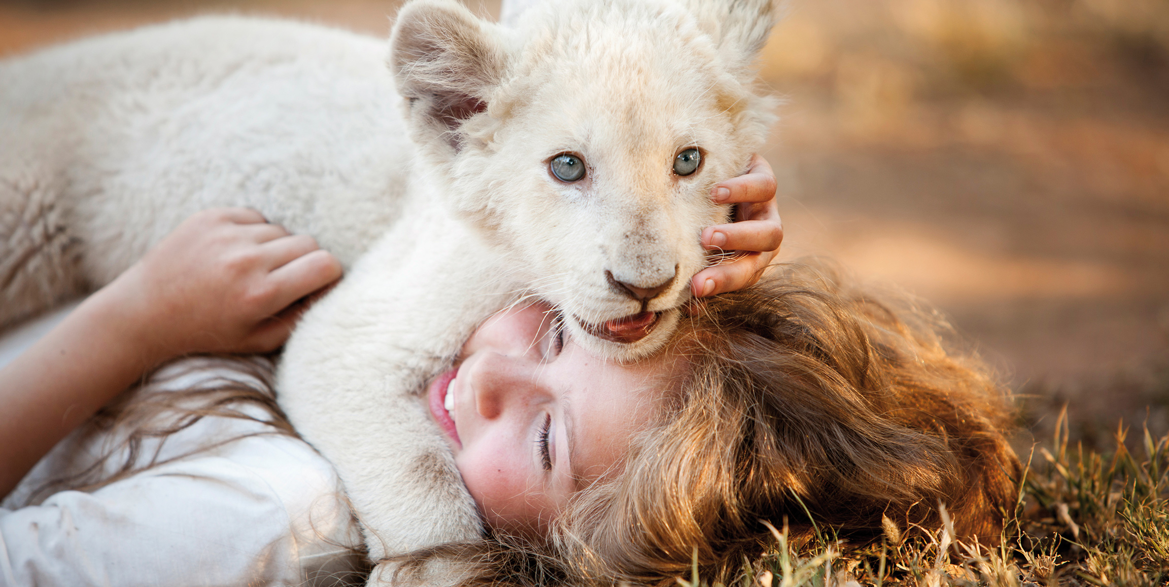 Shout! Studios And Ledafilms Entertainment Group Announce Film Distribution Alliance For Gilles De Maistre's Family Adventure Film MIA AND THE WHITE LION Starring Daniah De Villiers, Mélanie Laurent, Langley Kirkwood, and Ryan Mac Lennan